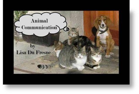 Animal communication letter head Lisa Du Fresne for my articles 1453249_490707037703643_2134087318_n