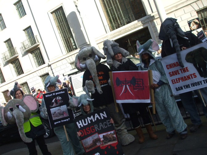 Save the Elephants!  (Protest,Chinese Embassy, London)