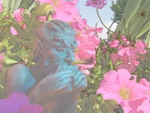 pink blue face find edges 9.6