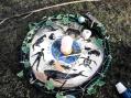 Earth Day altar at Richmond Park, London 22April'15